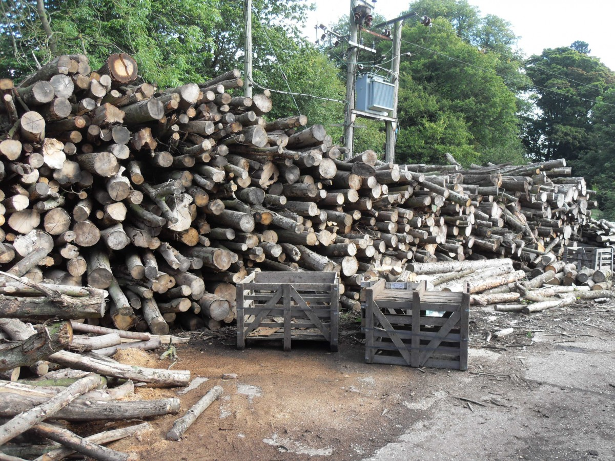 About Us West Norfolk Firewood